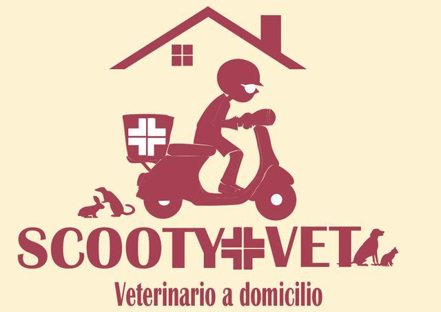 Veterinario a domicilio en cáceres