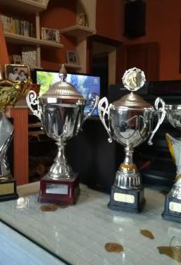 Copas y trofeos diferentes tamaños