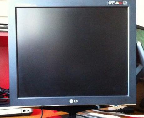 """Monitor lg flatron 17"""" con cables"""