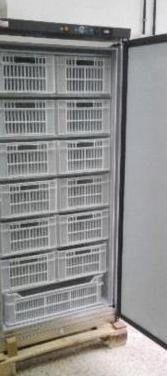 Armario congelación abx 500 inox. (nuevo)