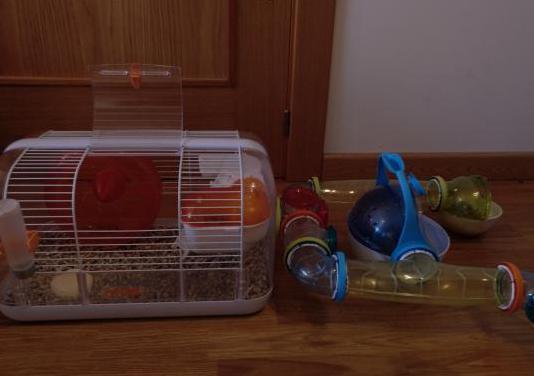 Jaulas, comida y suelo para hamster.