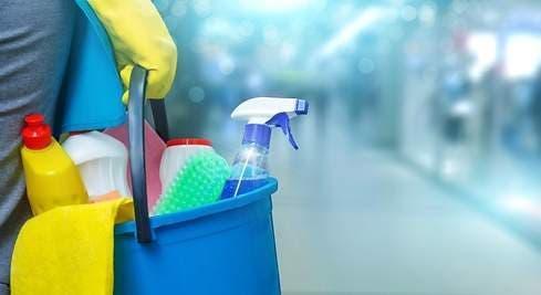 Chica limpieza del hogar