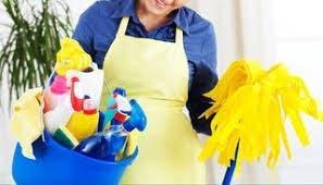 Chica seria para limpieza, dinámica y eficaz