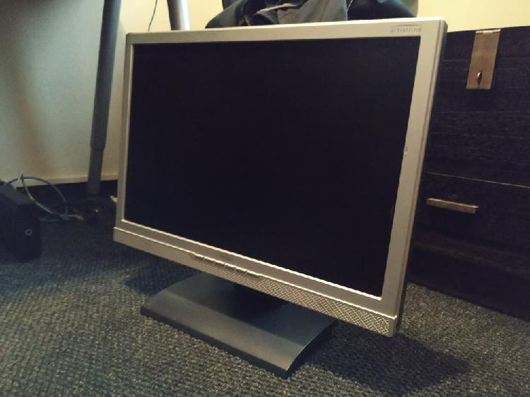 Monitor panorámico