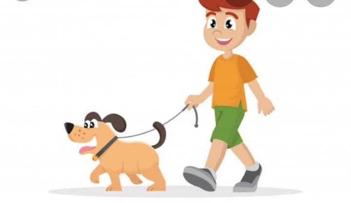 Paseo y cuidado de mascotas