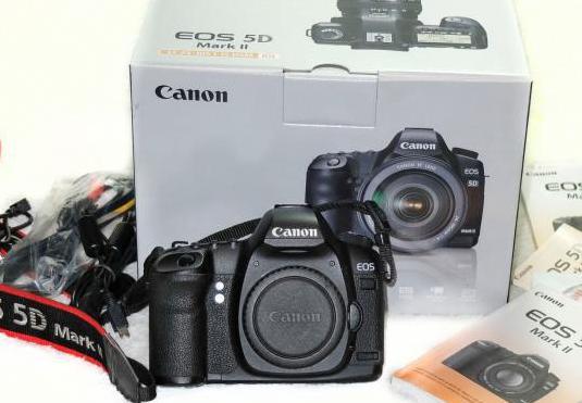 Canon eos 5d mark ii (45.000 disparos) extras