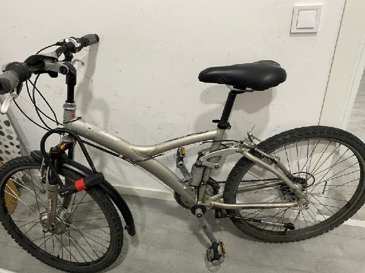 Bicicleta twin