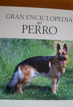 Perros de pastor (ilustrado)