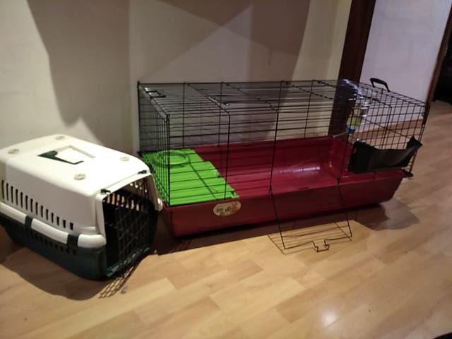 Jaula conejo grande y transportin
