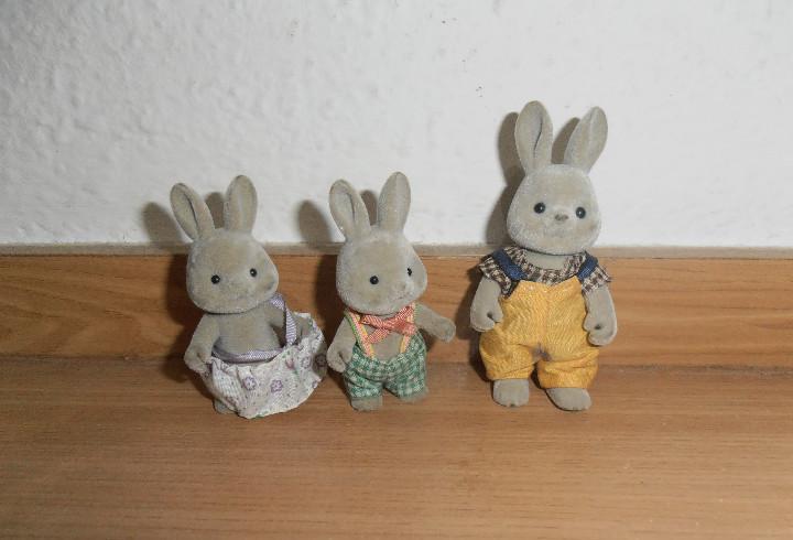 Familia conejos sylvania