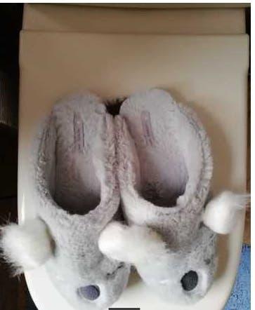 Botas, botines, zapatos, zapatillas