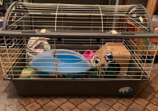 Jaula para roedor