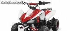 Quad 125cc speddy r7 automático +marcha atras