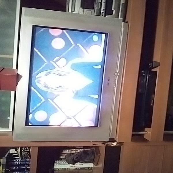 "Televisor de tubo 32"" samsung."