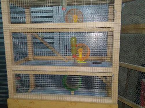 Jaula hamster 3 plantas artesanal.