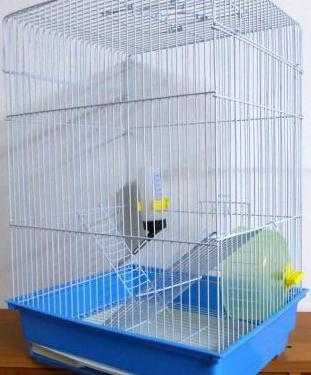 Jaula para hamster o roedor con accesorios.