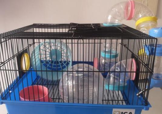 Jaula de hamster bola y regalos