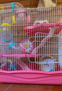 Jaula grande de hamsters