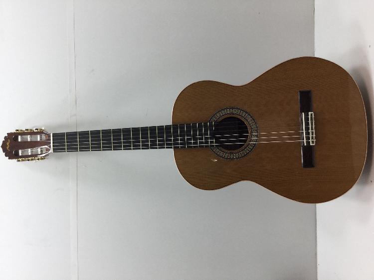 Guitarra clasica manuel rodriguez e