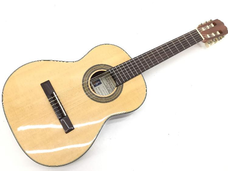 Guitarra clasica otros caballero 8