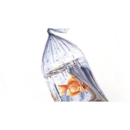 100 bolsas para trasportar peces