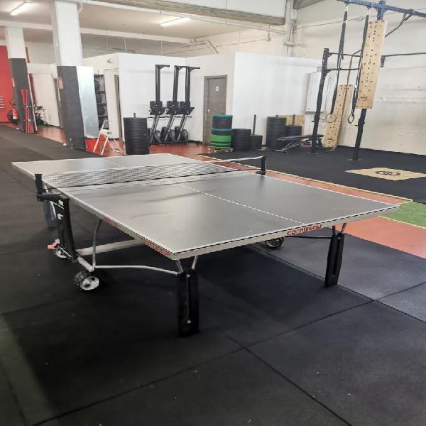 Mesa de tenis / ping pong
