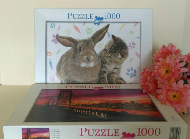 Dos puzzles de san francisco y de un conejo con un gato,