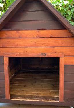 Caseta de madera barnizada para perros