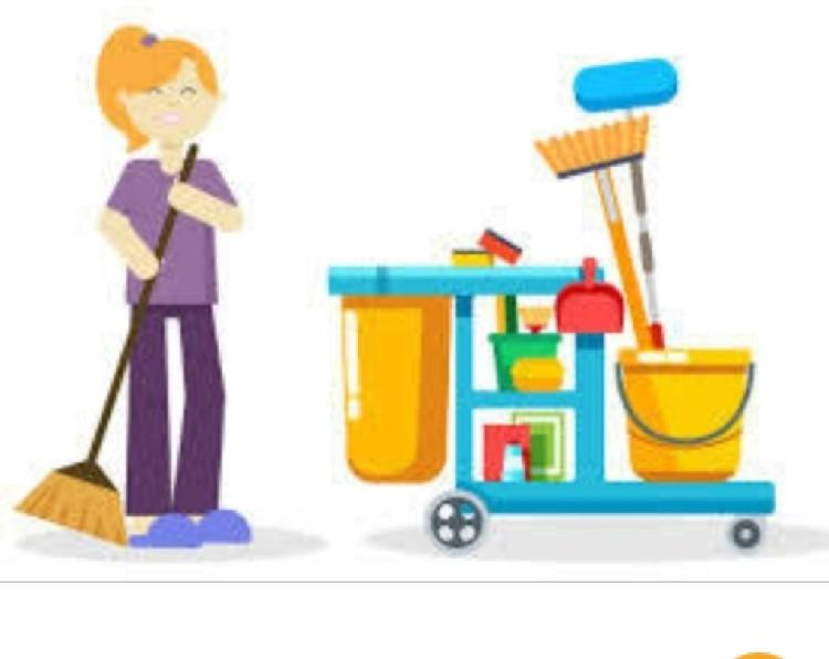 Chica limpieza particulares, comunidades, oficina