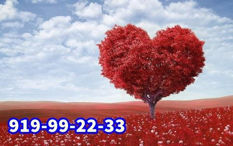 Videncia del amor y de la pareja 24 h
