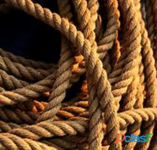 cuerdas y más   cuerdas y más
