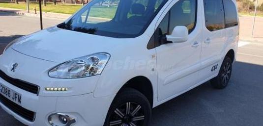 Peugeot partner tepee 4x4 dangel extreme 1.6 hdi 9