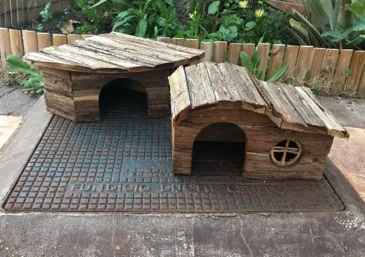Casas tortugas jardín