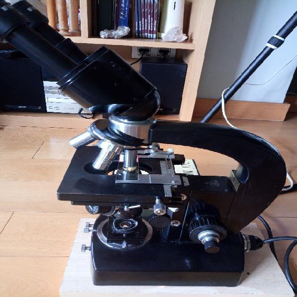 Microscopio carl zeiss jena nf