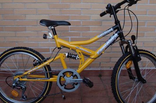 "Bicicleta 20"" doble suspensión"