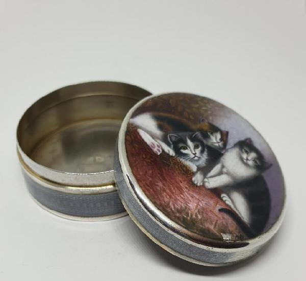 Maravillosa caja en plata en esmalte guilloche punzonada con