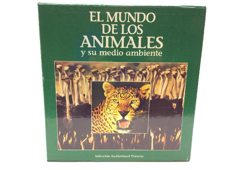38 % el mundo de los animales