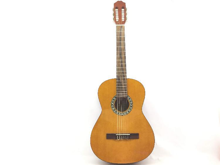 Guitarra acustica otros jt-450