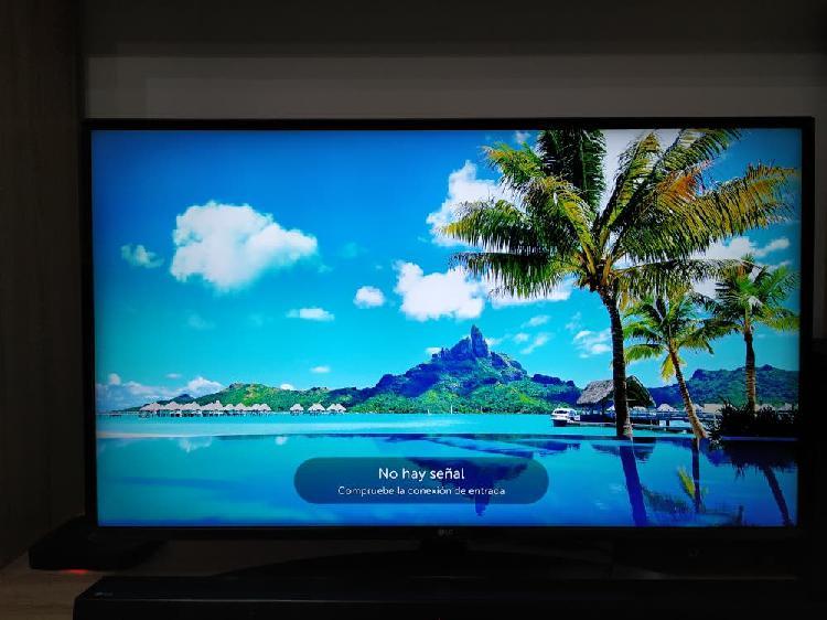 Televisor smart tv lg 44 pulgadas