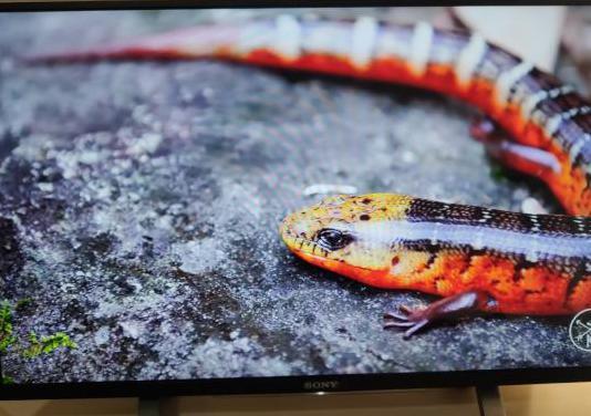 Tv led sony bravia 32 smart tv