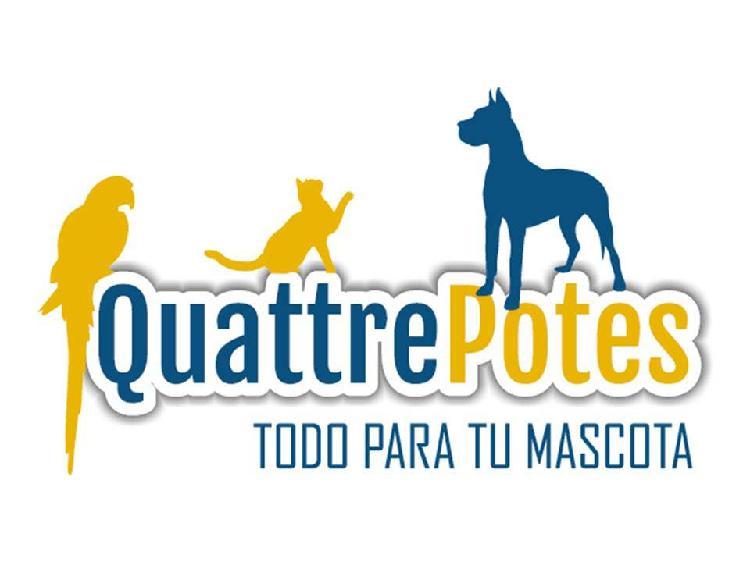 Traspaso tienda animales/peluqueria/consulta vet