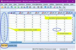 Clases del programa spss, on line y via presencial