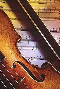 Clases de violín y viola dinámicas