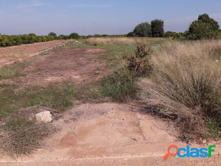 Venta de terreno rústico en la partida llombai de burriana
