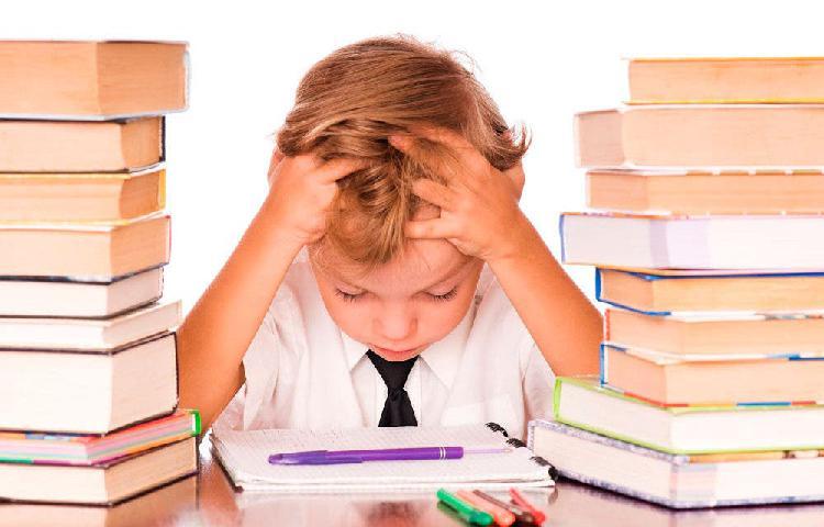 Clases particulares/ refuerzo escolar