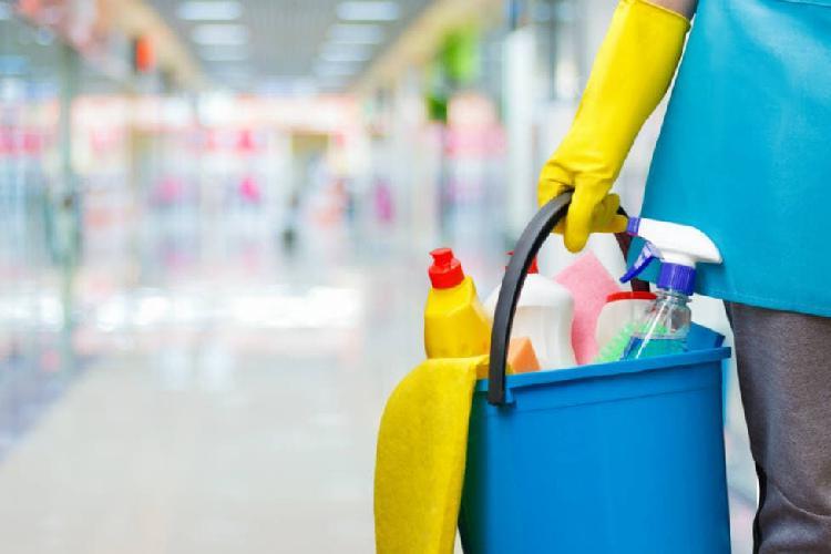 Tareas del hogar- niñera, limpieza y/o plancha