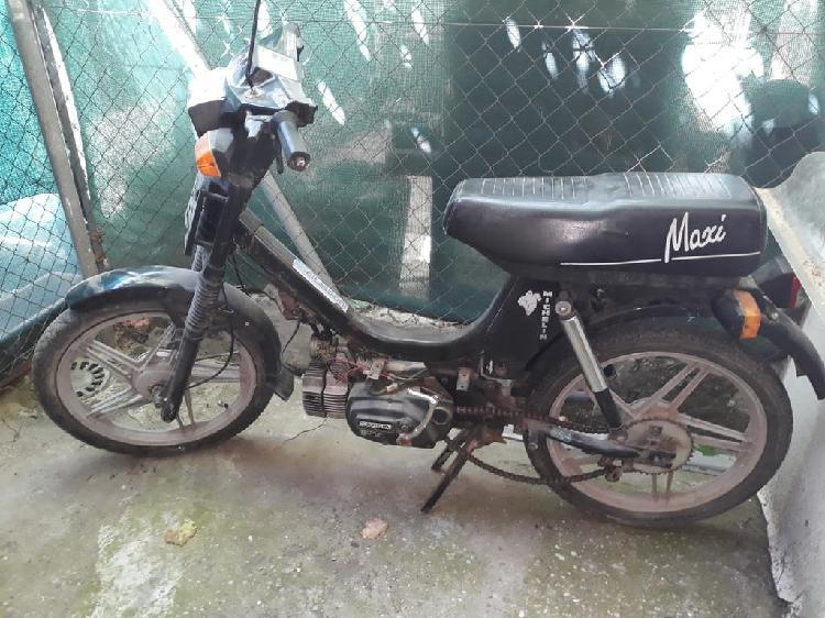 Suzuki maxi 50cc