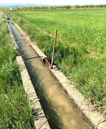 Producción integrada y agricultura ecológica en navarra