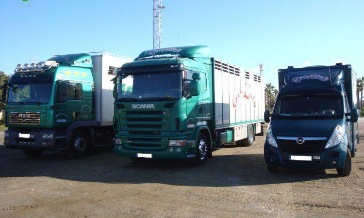 Transporte de ganado en málaga