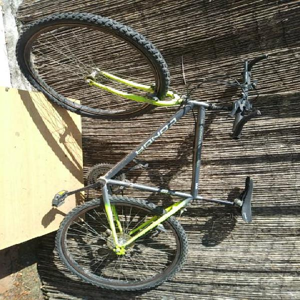Conor mountain bike